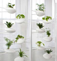 Modern pod-like hydroponic garden