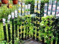 Réaliser un jardin vertical extérieur avec des bouteilles en plastiques - Le coin potager
