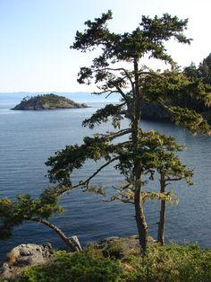 East Sooke, Vancouver Island, BC