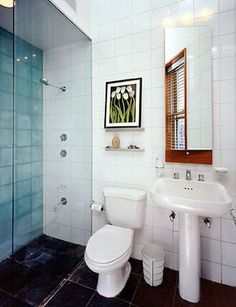 one day I will have a very small bathroom all to myself. maybe I'll share.