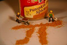 Pumpkin π | Flickr - Photo Sharing!