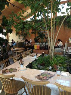 Beer Taps, Restaurant, Patio, Interior, Outdoor Decor, Green, Ideas, Home Decor, Decoration Home