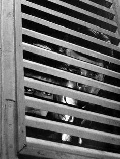 Monica Vitti & Alain Delon in The Eclipse (1962, dir.Michelangelo Antonioni)