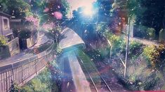 """The speed at which the sakura blossom petals fall… Five centimeters per second..."""