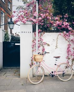 "Alex op Instagram: ""From that day I was out with the @welovetobrunch crew and we hijacked an unsuspecting passerby just because the colour of her bike matched the blossoms. The funnier picture would have been the behind the scenes view of everyone crowding around to get a good shot of the bike  What we do for Instagram!"""