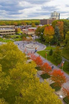 The Academic Mall on the campus of SUNY University at Stony Brook in the large town of Stony Brook, New York Queen's College, College Board, University Search, Binghamton University, Stony Brook University, Port Jefferson, Long Island Ny, Places Of Interest, Around The Worlds