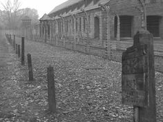 pic by John Smeets, Auschwitz Study Group Member.