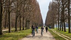 PARIS TO VERSAILLES: This 9-hour day trip guides you by bike through the royal forest, Marie Antoinette's village, and the Grand and Petit Trianons, with time to explore the fabulous chateau. You'll stop at the Versailles farmers' market to buy supplies for your picnic lunch beside the Grand Canal. Adult ticket costs  $115, or $90 if you have a  Paris Museum Pass, and includes round-trip train ticket to Versailles, bike, guide, chateau and Marie Antoinette tickets.