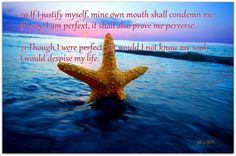 20 If I justify myself, mine own mouth shall condemn (punish) me: if I say, I am perfect, it shall also prove me perverse (wicked).
