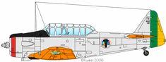 T-6D, EAer