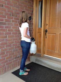 do it yourself divas: DIY Pest Control
