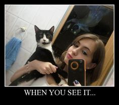 1.When you see it post  Click for more Funny Pictures --> http://www.funnypicshub.com