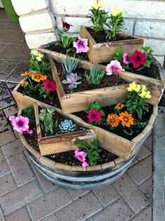 Ideas How To Use Old Barrel For Planting Flowers Using a whiskey barrel planter is an ingenious way of container gardening. What…Using a whiskey barrel planter is an ingenious way of container gardening. Garden Planters, Succulents Garden, Planting Flowers, Flowers Garden, Spring Flowers, Gnome Garden, Succulent Pots, Flower Gardening, Herb Garden