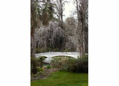 Photgraphy by: Ava Moore Photography Magnolia Plantation and Gardens Charleston, SC (No link to follow - my personal pictures)