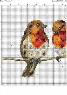 "Photo from album ""птички"" on Yandex. Cross Stitch Bird, Cross Stitch Samplers, Cross Stitch Animals, Modern Cross Stitch, Cross Stitch Charts, Cross Stitch Designs, Cross Stitching, Cross Stitch Embroidery, Cross Stitch Patterns"