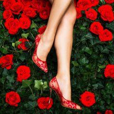 Nicholas Kirkwood. Red Lace.