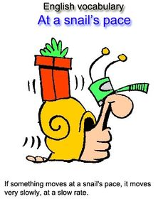 English vocabulary: At a snail's pace = If something moves at a snail's pace, it moves very slowly, at a slow rate.