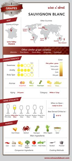 White Wine Grape Variety: Sauvignon Blanc