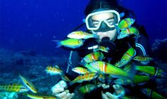 scuba diving! there is the Dive Shop here in Little Rock that certifies you in scuba diving and has an indoor facility, would LOVE for both of us to do that. Which also means scuba gear would be a great idea