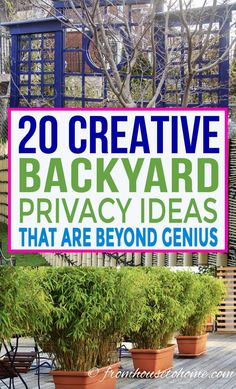 These outdoor privacy ideas create a privacy screen for your backyard garden that will keep the neighbors from looking in. Include them in the garden design for your landscaping to create a yard you'll want to spend time in. Backyard Privacy Screen, Privacy Trellis, Privacy Landscaping, Outdoor Privacy, Diy Trellis, Backyard Pergola, Pergola Plans, Pergola Kits, Pergola Ideas