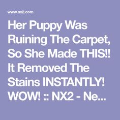 Her dog kept having accidents inside the house, so she found the best way to get rid of stains completely! House Cleaning Tips, Diy Cleaning Products, Cleaning Solutions, Cleaning Hacks, Dog Health Tips, Pet Health, Cleaning Microfiber Couch, Dog Urine, Dog Area