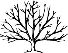 Drawing A Tree Without Leaves | kids drawing coloring page