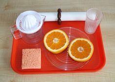 practical life activity: Squeezing Oranges