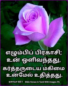 Bible Words, Bible Verses, Scriptures, Bible Vasanam In Tamil, Isaiah 60 1, Image Fb, King Of Kings, Blessed, Philippians 4