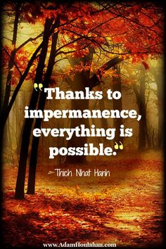 Thanks to impermanence everything is possible Buddhist Quotes, Spiritual Quotes, Wisdom Quotes, Chakra, Social Media Strategist, Buddha Zen, Thich Nhat Hanh, Everything Is Possible, Life Quotes Love