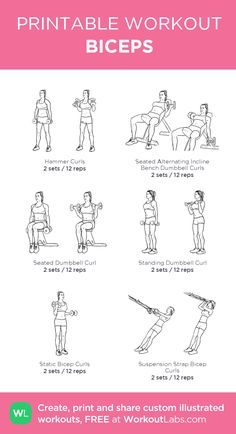 Biceps Workout That Will Have You Bursting Through Your Sleeves KNOW - BICEPS-I've always had a hard time building my biceps at the same rate as the rest of my physique, particularly the short head. My bis have always required extra attentio Bicep Workout Routine, Dumbbell Bicep Workout, Bicep Workout Women, Back And Bicep Workout, Bicep And Tricep Workout, Gym Workout Plan For Women, Biceps And Triceps, Back And Biceps, Shoulder Workout