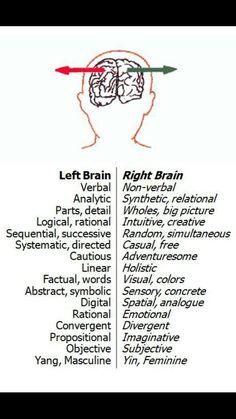 Brain sides