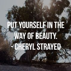 """""""There's a sunset and a sunrise every day. You can choose to be there for it, you can choose to put yourself in the way of beauty.""""  Cheryl Strayed - Wild"""