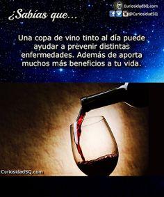 Una copa de vino tinto al día ayuda a combatir distintas enfermedades.