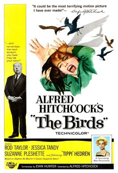 The Birds  Alfred Hitchcock Movie Poster Print  13x19 by jangoArts, $19.50