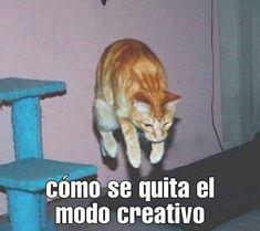 ♡̷̷ꦿpichula con muelas – s esenta y uno Images Minecraft, Minecraft Memes, Best Memes, Dankest Memes, Funny Memes, Mundo Meme, Reaction Pictures, Funny Pictures, Club Penguin
