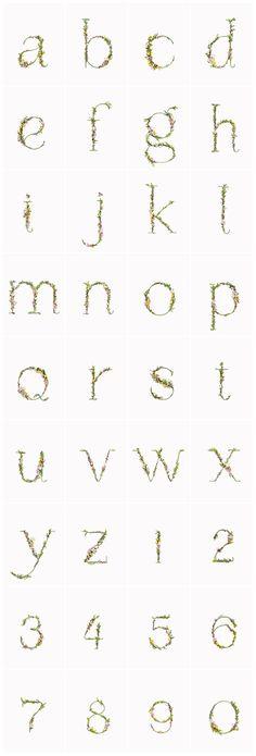 Tipografías florales | El tarro de ideasEl tarro de ideas