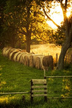 Country Bales by laughlinc on Flickr.