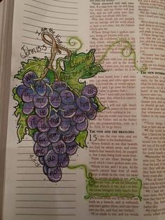Bible Artwork Journaling I'm the vine, you're the branches. Whoever abides in me & I in him, he it's Art Journaling, Bible Study Journal, Scripture Study, Bible Art, My Bible, Bible Quotes, Bible John, Scripture Journal, Beautiful Words