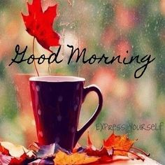 Discover and share Good Morning Fall Quotes. Explore our collection of motivational and famous quotes by authors you know and love. Morning Morning, Good Morning Coffee, Autumn Morning, Good Morning Picture, Good Morning Greetings, Good Morning Good Night, Morning Pictures, Good Morning Wishes, Morning Messages