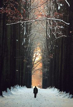 Walk down this path with me...