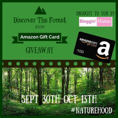 "I am shar­ing this post as part of a Blog­gin' Mamas Social Good Campaign, and was not compensated for doing so.   Bloggin' Mamas is sponsoring this giveaway in support of the Ad Council and the U.S. Forest Service's ""Discover..."