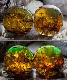 Chiapas amber plugs by Diablo Organics. Secondary photo is back-lit with led lights which creates the green tones.