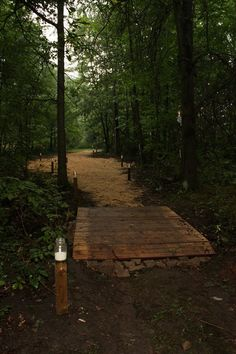 Wedding in the woods- Would be hard to walk in but it looks good...sand or pebbles?.....Maybe put some solar lights hidden in the woods.