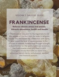 Frankincense was used by the Egyptians to aid the release of the soul from the body in religious rituals. Thought to encourage blessings and abundance, Frankincense can shift energetic blocks that hold you back from achieving your pursuits. Frankincense Essential Oil Uses, Frankincense Incense, Essential Oils, Magic Herbs, Herbal Magic, Healing Oils, Healing Herbs, Herbal Tinctures, Herbalism