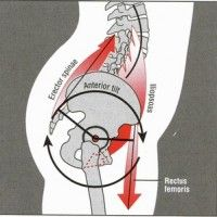Tight Hip Flexors Are A Major Pain In the Back