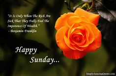 Happy Sunday #sunday