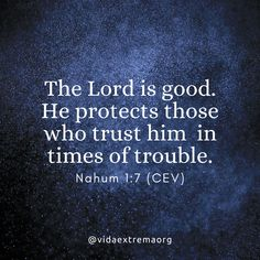 The LORD is good. He protects those who trust him in times of trouble. Christian Images, Christian Quotes, The Lord Is Good, Bible Verses, Trust, Good Things, Times, Thoughts, Texts