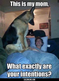 Her Personal Guardian#funny #lol #lolzonline