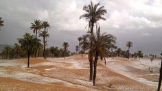 snowing in algerian desesrt
