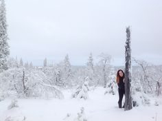 Wonderland in Levi, Lapland, Finland Photo by Virpula. Instagram @Virpula1